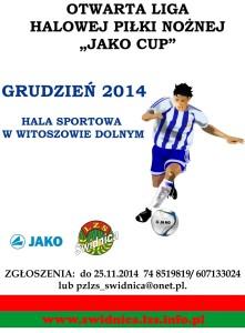 plakat_liga2014
