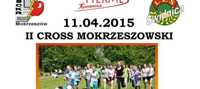 II Cross Mokrzeszowski – 11.04.2015